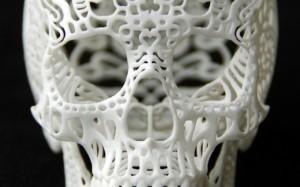 CraniaAnatomicaFiligre-front-680x425